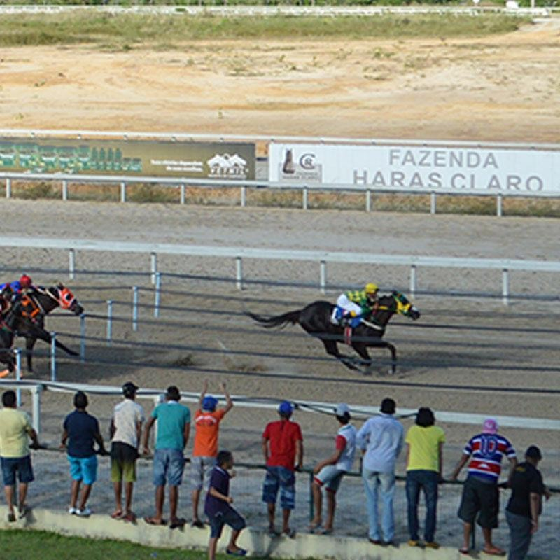 Ler mais sobre CONSOLAÇÃO - VIII GP FORTALEZA QUARTER HORSE SHOW 2017