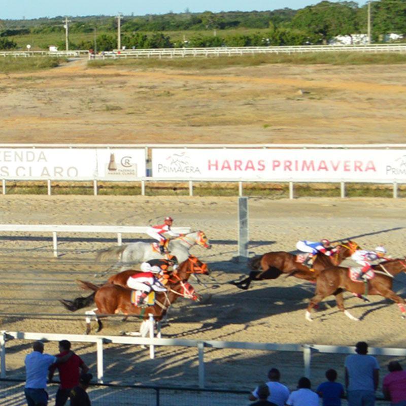 VIII GP FORTALEZA QUARTER HORSE SHOW 2017