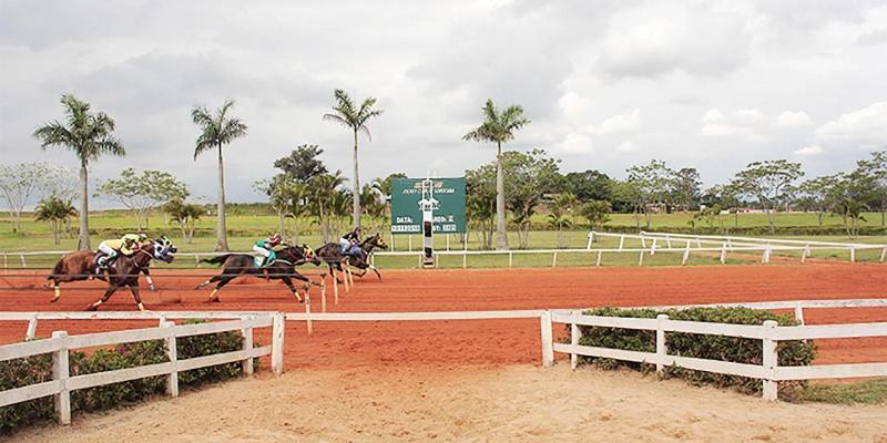 Quarto Páreo - Classificatória - GP Campeão dos Campeões - 365 metros