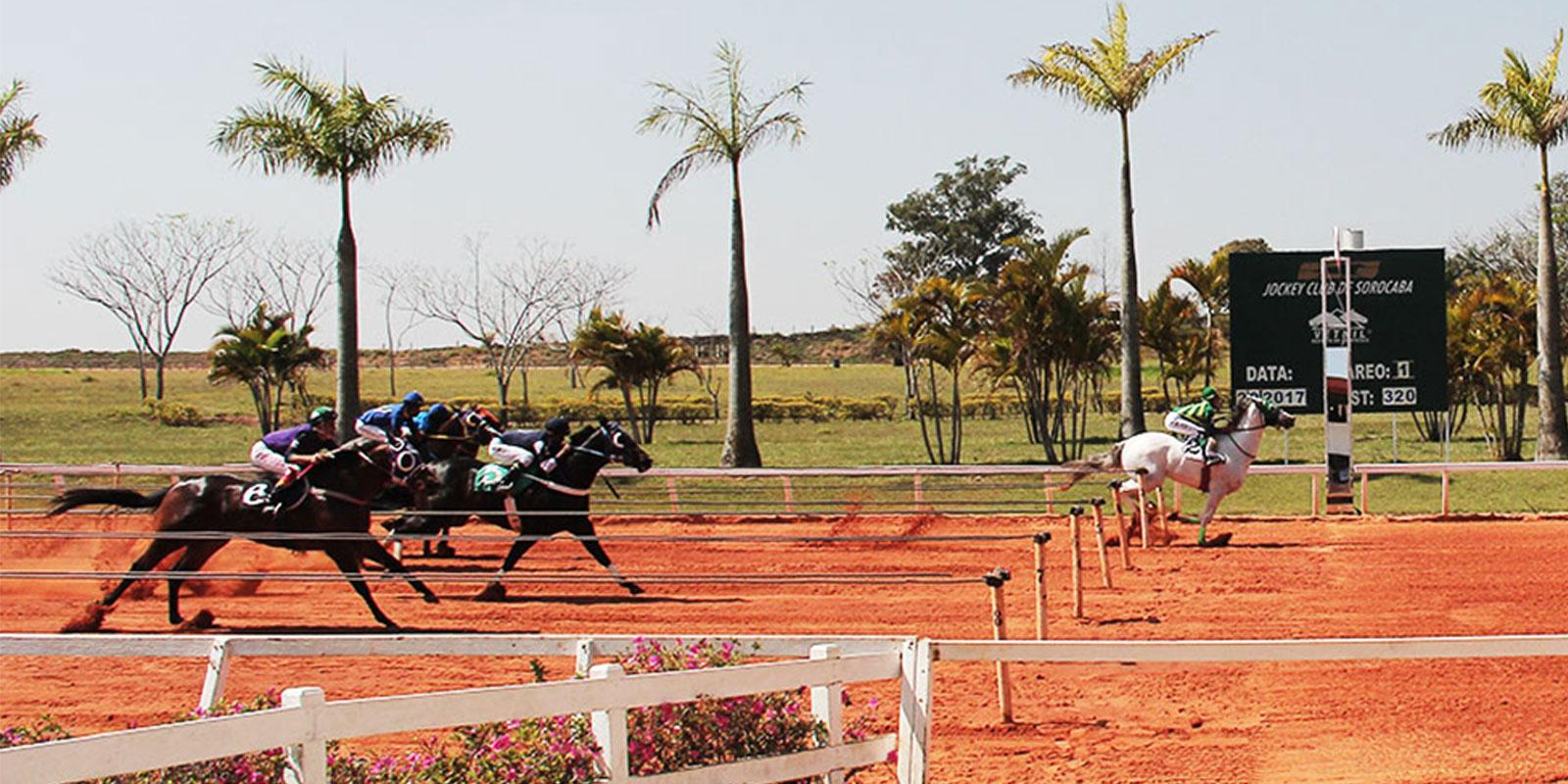 1º Páreo - Reunião 14 no Jockey Club de Sorocaba