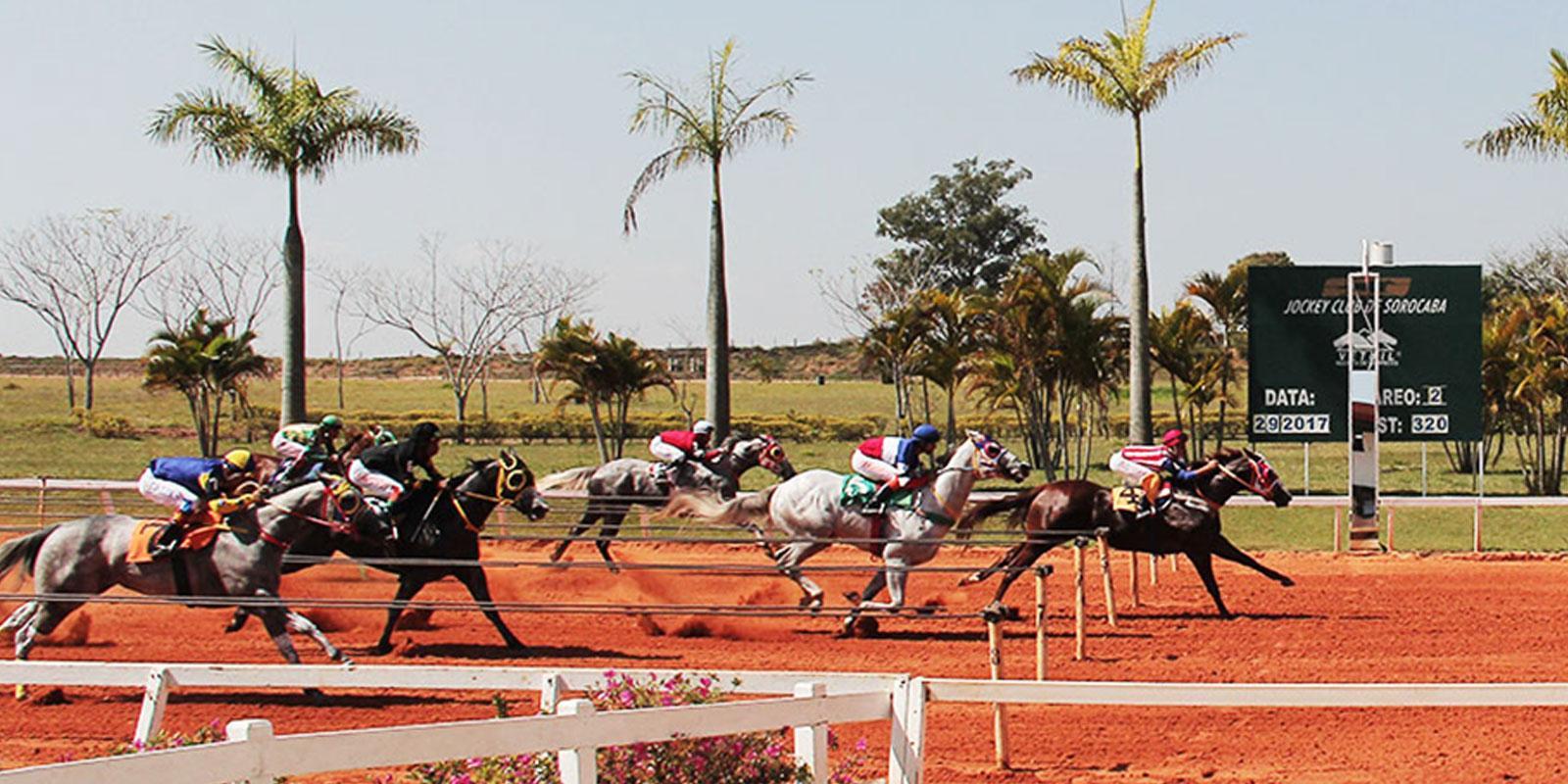 2º Páreo - Reunião 14 no Jockey Club de Sorocaba