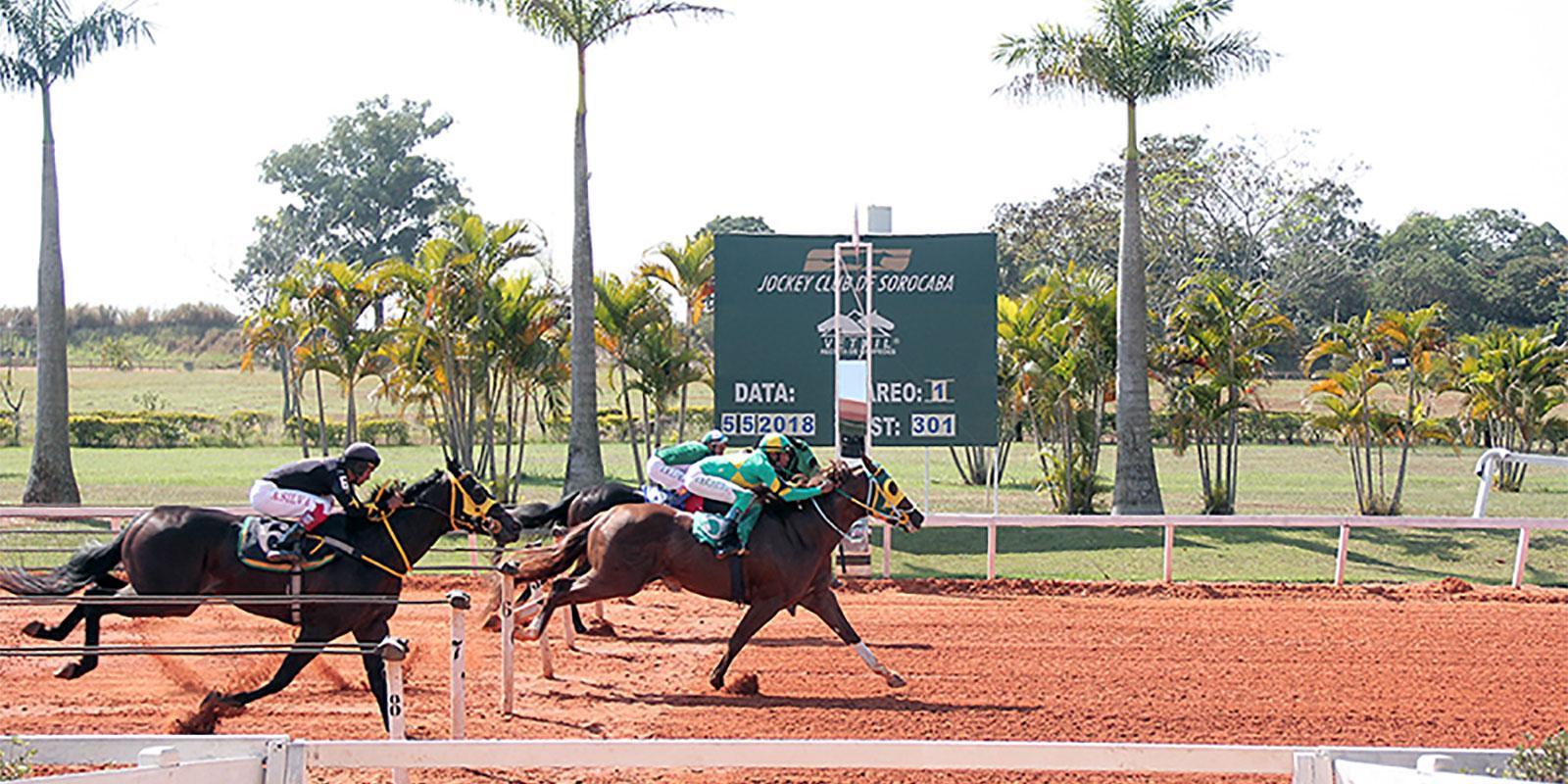 Páreo Especial Revista Victory Race
